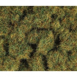 4mm Herbes de printemps 100g