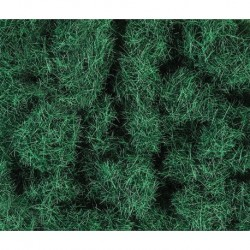 4mm Herbes de pâturage 20g