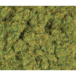 2mm Herbes de printemps 100g