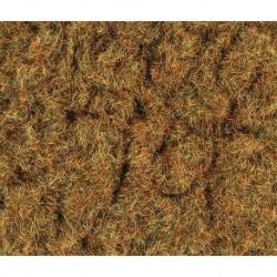 2mm Herbes d'hiver 30g