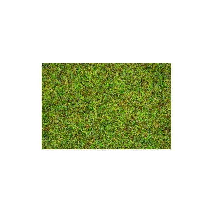 Herbe, Vert Clair. 2,5 mm, 20 g