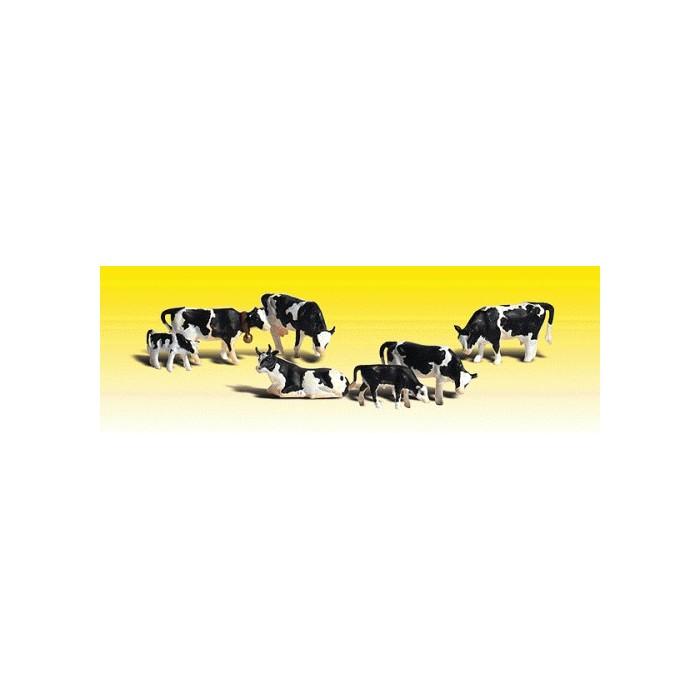 Vaches Holstein. 5 vaches et 2 veaux
